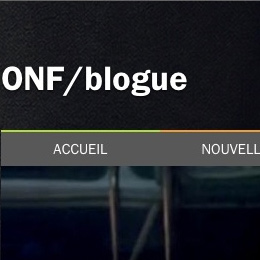 onf-blogue-s